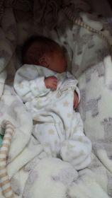 Davi, o primeiro bebê do curso de Casais Grávidos